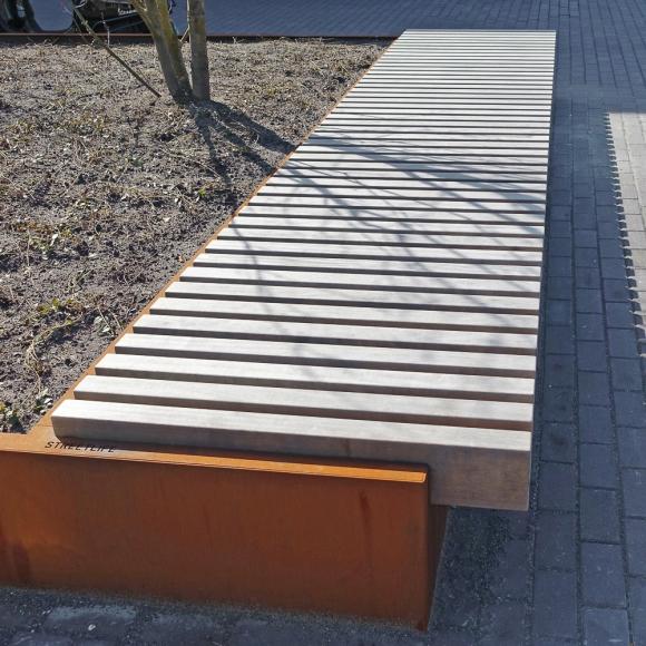 Bento Tree Boxes