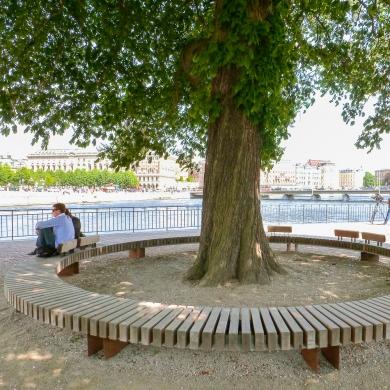 Rough&Ready Circular Benches