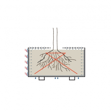 Treetec Basic